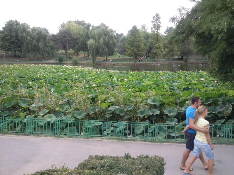 Parcul Circului Bucuresti cele mai frumoase parcuri capitala