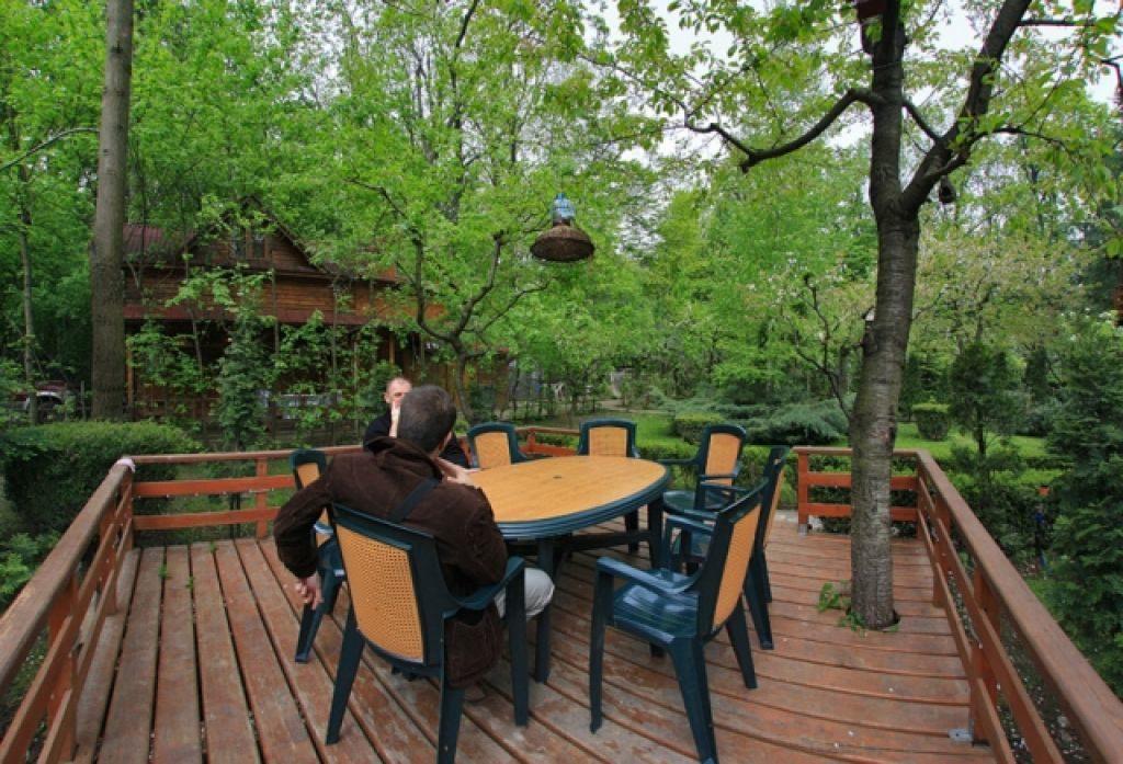 Parcul Padurea Baneasa cele mai frumoase parcuri capitala