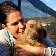 Vagabonzii din Haimanale. Gabriela, o asistentă medicală, are grijă de câinii nimănui din satul lui Caragiale