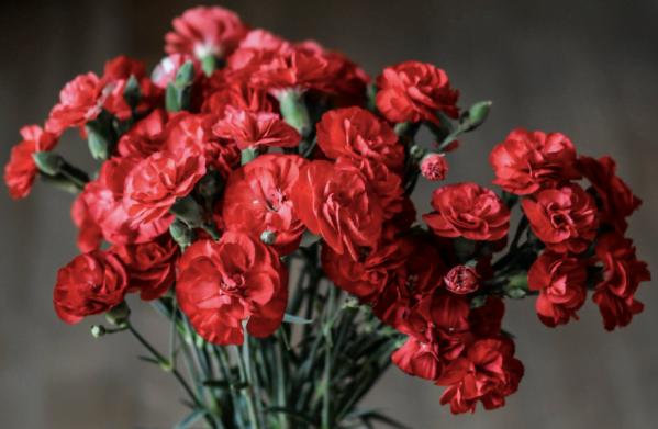 Flori potrivite pentru a fi dăruite de ziua onomastică a oamenilor dragi